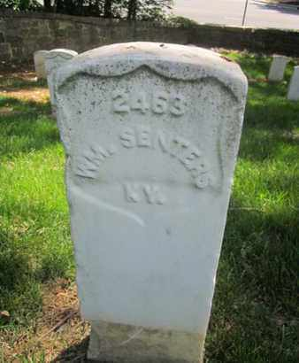 SENTERS (CW), WILLIAM - Anne Arundel County, Maryland | WILLIAM SENTERS (CW) - Maryland Gravestone Photos