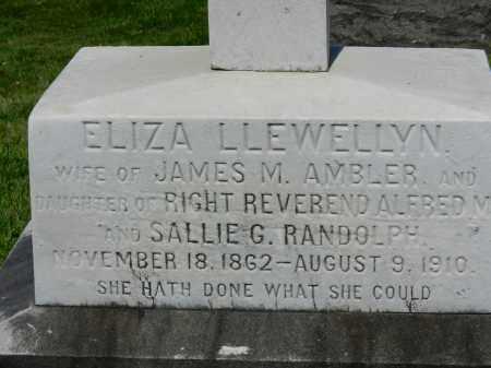 AMBLER, ELIZA LLEWELLYN - Baltimore City County, Maryland | ELIZA LLEWELLYN AMBLER - Maryland Gravestone Photos