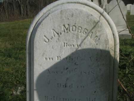 MORGAN, J. ASBURY - Baltimore City County, Maryland | J. ASBURY MORGAN - Maryland Gravestone Photos
