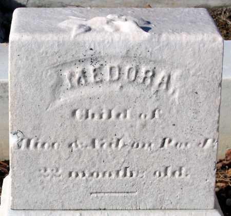 POE, MEDORA - Baltimore City County, Maryland   MEDORA POE - Maryland Gravestone Photos
