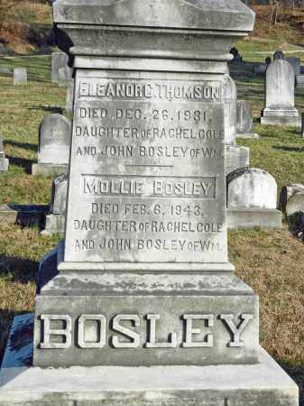 BOSLEY, MOLLIE - Baltimore County, Maryland | MOLLIE BOSLEY - Maryland Gravestone Photos