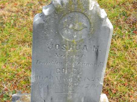 COLE, JOSHUA M. - Baltimore County, Maryland | JOSHUA M. COLE - Maryland Gravestone Photos