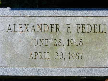 FEDELI, ALEXANDER F. - Baltimore County, Maryland   ALEXANDER F. FEDELI - Maryland Gravestone Photos
