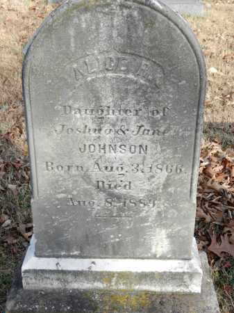 JOHNSON, ALICE R - Baltimore County, Maryland | ALICE R JOHNSON - Maryland Gravestone Photos