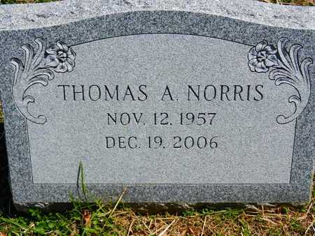 NORRIS, THOMAS E. - Baltimore County, Maryland | THOMAS E. NORRIS - Maryland Gravestone Photos