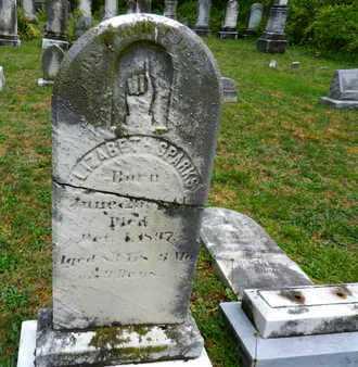 SPARKS, ELIZABETH - Baltimore County, Maryland   ELIZABETH SPARKS - Maryland Gravestone Photos