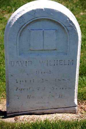 WILHELM, DAVID - Baltimore County, Maryland | DAVID WILHELM - Maryland Gravestone Photos