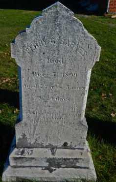 BARNES, PERRY G - Carroll County, Maryland | PERRY G BARNES - Maryland Gravestone Photos