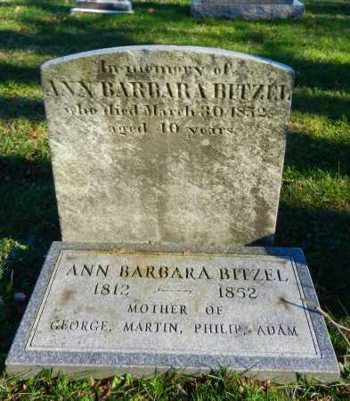 BITZEL, ANN BARBARA - Carroll County, Maryland | ANN BARBARA BITZEL - Maryland Gravestone Photos