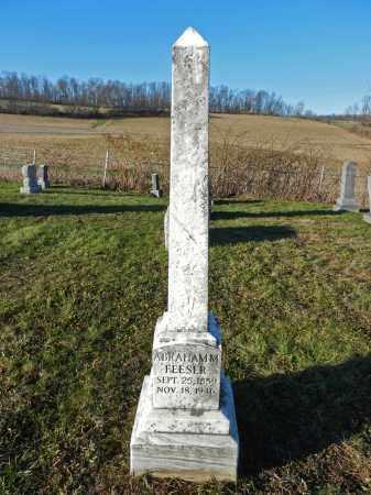 FEESER, ABRAHAM M - Carroll County, Maryland | ABRAHAM M FEESER - Maryland Gravestone Photos