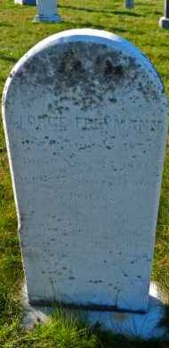 FREYMANN, GEORGE - Carroll County, Maryland | GEORGE FREYMANN - Maryland Gravestone Photos