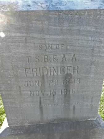 FRIDINGER, LUTHER S - Carroll County, Maryland | LUTHER S FRIDINGER - Maryland Gravestone Photos
