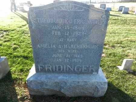 FRIDINGER, THEODORE S B - Carroll County, Maryland | THEODORE S B FRIDINGER - Maryland Gravestone Photos