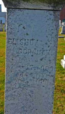 GORSUCH, ELISHUA - Carroll County, Maryland | ELISHUA GORSUCH - Maryland Gravestone Photos
