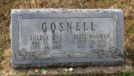 GOSNELL, GOLDIA MAE - Carroll County, Maryland | GOLDIA MAE GOSNELL - Maryland Gravestone Photos