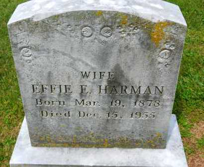 HARMAN, EFFIE E. - Carroll County, Maryland | EFFIE E. HARMAN - Maryland Gravestone Photos