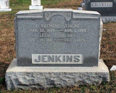 JENKINS, C. RAYMOND - Carroll County, Maryland | C. RAYMOND JENKINS - Maryland Gravestone Photos