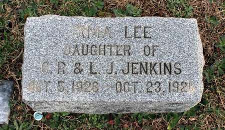 JENKINS, IRMA LEE - Carroll County, Maryland | IRMA LEE JENKINS - Maryland Gravestone Photos