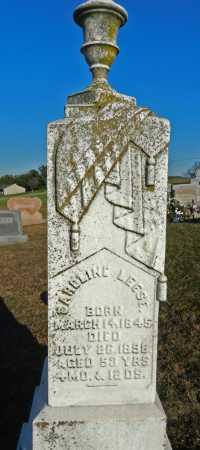 LEESE, CAROLINE - Carroll County, Maryland   CAROLINE LEESE - Maryland Gravestone Photos