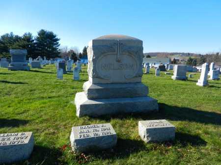 NELSON, WILLIE - Carroll County, Maryland | WILLIE NELSON - Maryland Gravestone Photos