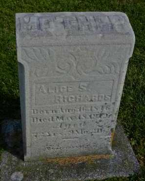 RICHARDS, ALICE S. - Carroll County, Maryland | ALICE S. RICHARDS - Maryland Gravestone Photos