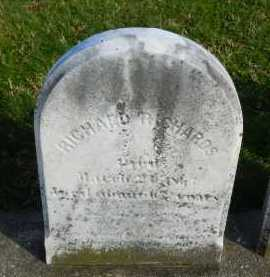 RICHARDS, RICHARD - Carroll County, Maryland | RICHARD RICHARDS - Maryland Gravestone Photos