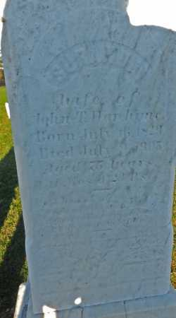 WAREHIME, SURANDA (?) - Carroll County, Maryland | SURANDA (?) WAREHIME - Maryland Gravestone Photos