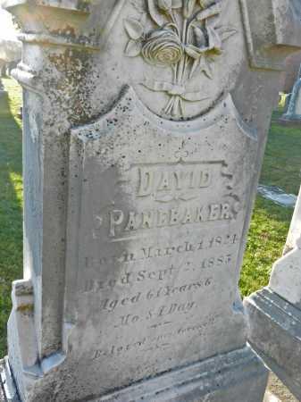 PANEBAKER, DAVID - Carroll County, Maryland | DAVID PANEBAKER - Maryland Gravestone Photos