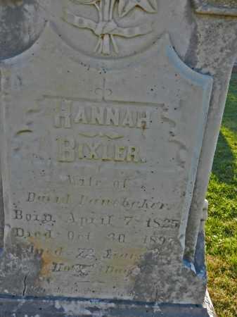 PANEBAKER, HANNAH - Carroll County, Maryland   HANNAH PANEBAKER - Maryland Gravestone Photos