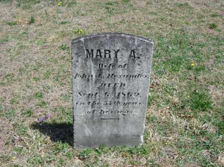 ALEXANDER, MARY A. - Cecil County, Maryland   MARY A. ALEXANDER - Maryland Gravestone Photos