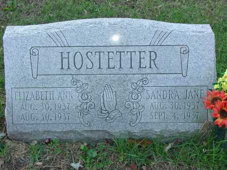HOSTETTER, ELIZABETH ANN - Cecil County, Maryland | ELIZABETH ANN HOSTETTER - Maryland Gravestone Photos