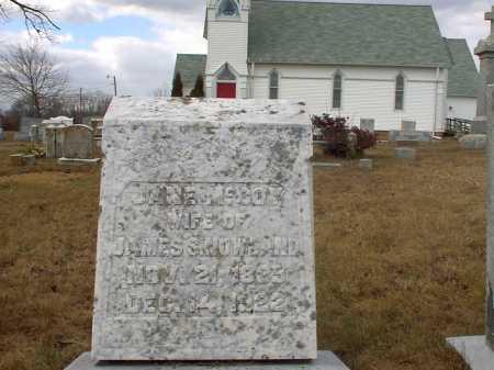 MCCOY NOWLAND, JANE - Cecil County, Maryland | JANE MCCOY NOWLAND - Maryland Gravestone Photos