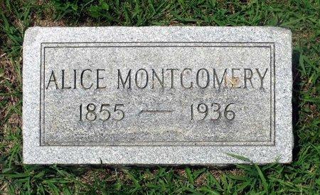 MONTGOMERY, ALICE - Charles County, Maryland | ALICE MONTGOMERY - Maryland Gravestone Photos
