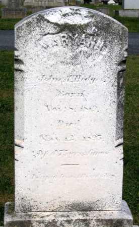 HEDGES, MARY ANN - Frederick County, Maryland | MARY ANN HEDGES - Maryland Gravestone Photos