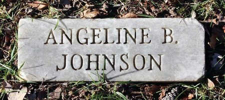 JOHNSON, ANGELINE B. - Howard County, Maryland | ANGELINE B. JOHNSON - Maryland Gravestone Photos