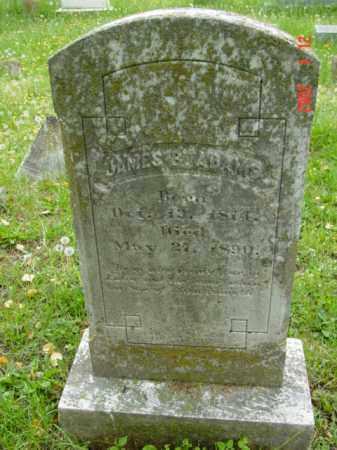 ADAMS, JAMES B. - Talbot County, Maryland   JAMES B. ADAMS - Maryland Gravestone Photos