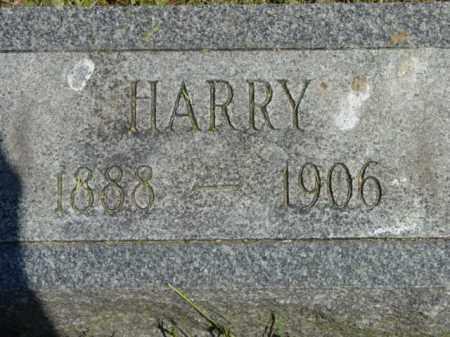 BOWDLE, HARRY - Talbot County, Maryland | HARRY BOWDLE - Maryland Gravestone Photos