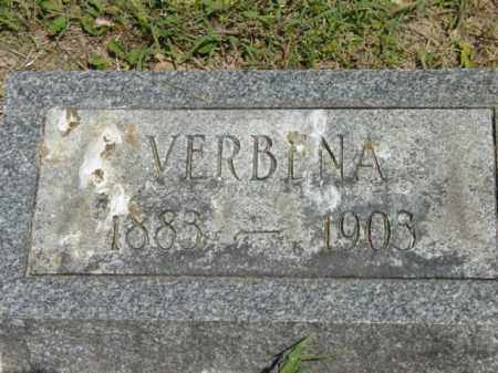 BOWDLE, VERBINA - Talbot County, Maryland | VERBINA BOWDLE - Maryland Gravestone Photos