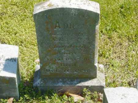 CHAPLAIN, ADIE - Talbot County, Maryland | ADIE CHAPLAIN - Maryland Gravestone Photos