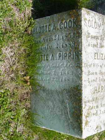 COOK, CHARLOTTE A. - Talbot County, Maryland | CHARLOTTE A. COOK - Maryland Gravestone Photos