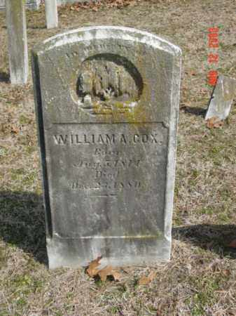 COX, WILLIAM A. - Talbot County, Maryland | WILLIAM A. COX - Maryland Gravestone Photos