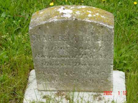 DAVIS, CHARLES MITCHEL - Talbot County, Maryland   CHARLES MITCHEL DAVIS - Maryland Gravestone Photos
