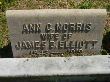 ELLIOTT, ANN C. - Talbot County, Maryland | ANN C. ELLIOTT - Maryland Gravestone Photos