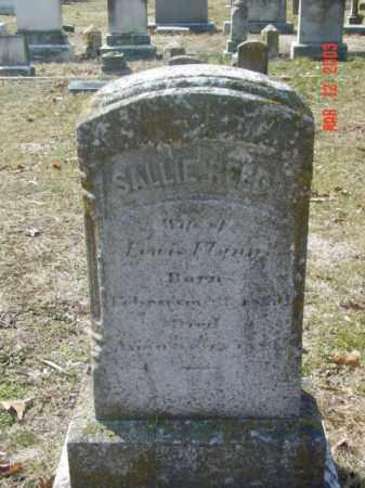 FLYNN, SALLIE REED - Talbot County, Maryland | SALLIE REED FLYNN - Maryland Gravestone Photos
