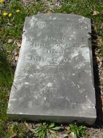 GILLINGHAM, ROBERT P. - Talbot County, Maryland   ROBERT P. GILLINGHAM - Maryland Gravestone Photos