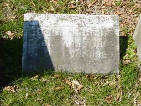 HIGGINS, JOSIAH - Talbot County, Maryland   JOSIAH HIGGINS - Maryland Gravestone Photos