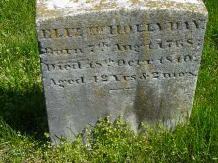 HOLLYDAY, ELIZABETH - Talbot County, Maryland | ELIZABETH HOLLYDAY - Maryland Gravestone Photos