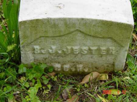 JESTER, B. J. - Talbot County, Maryland   B. J. JESTER - Maryland Gravestone Photos