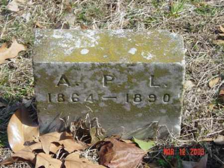 LEONARD, ANNIE P. - Talbot County, Maryland | ANNIE P. LEONARD - Maryland Gravestone Photos
