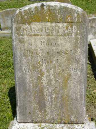 LEONARD, CARL CONRAD - Talbot County, Maryland | CARL CONRAD LEONARD - Maryland Gravestone Photos